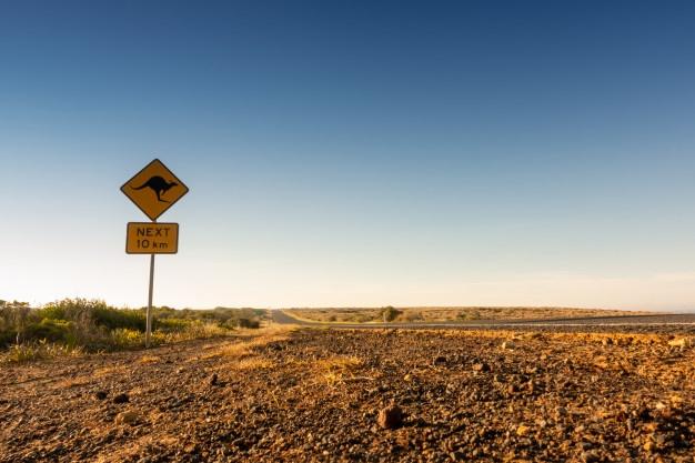 """Foto van een Australische weg met een """"oppassen voor kangoeroes"""" bord"""