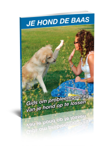 Labrador Handboek Review. Foto Bonus 2