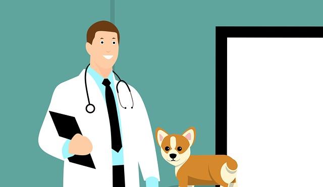 Tekening van een dierenarts met kleine hond