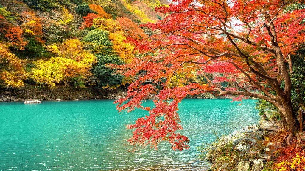 Tijd voor Mindfulness. Foto van meer met bomen.