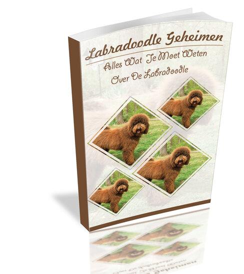 Foto van het Labradoodle Geheimen boek.