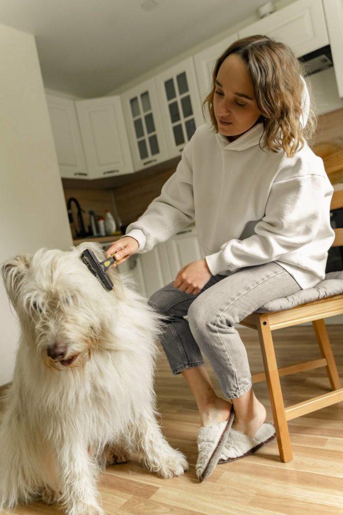 Foto van een meisje dat de vacht van een hond borstelt.